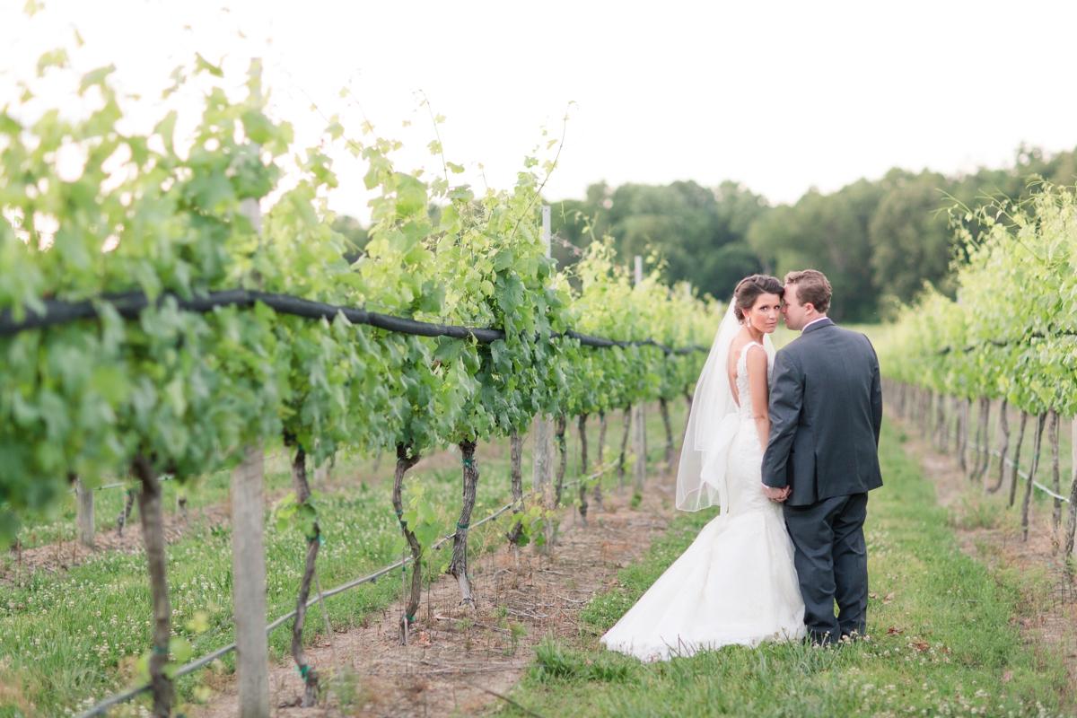 A Blush Colored Rustic Williamsburg Winery Wedding Photo_1052