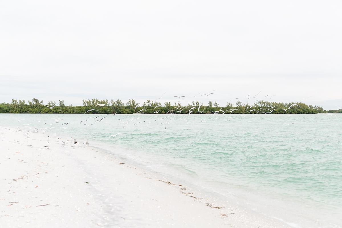 Gasparilla Island Vacation Rentals Florida Beach House_7760