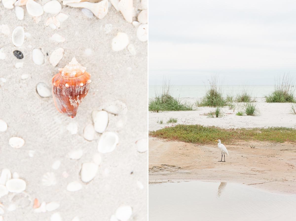 Gasparilla Island Vacation Rentals Florida Beach House_7763