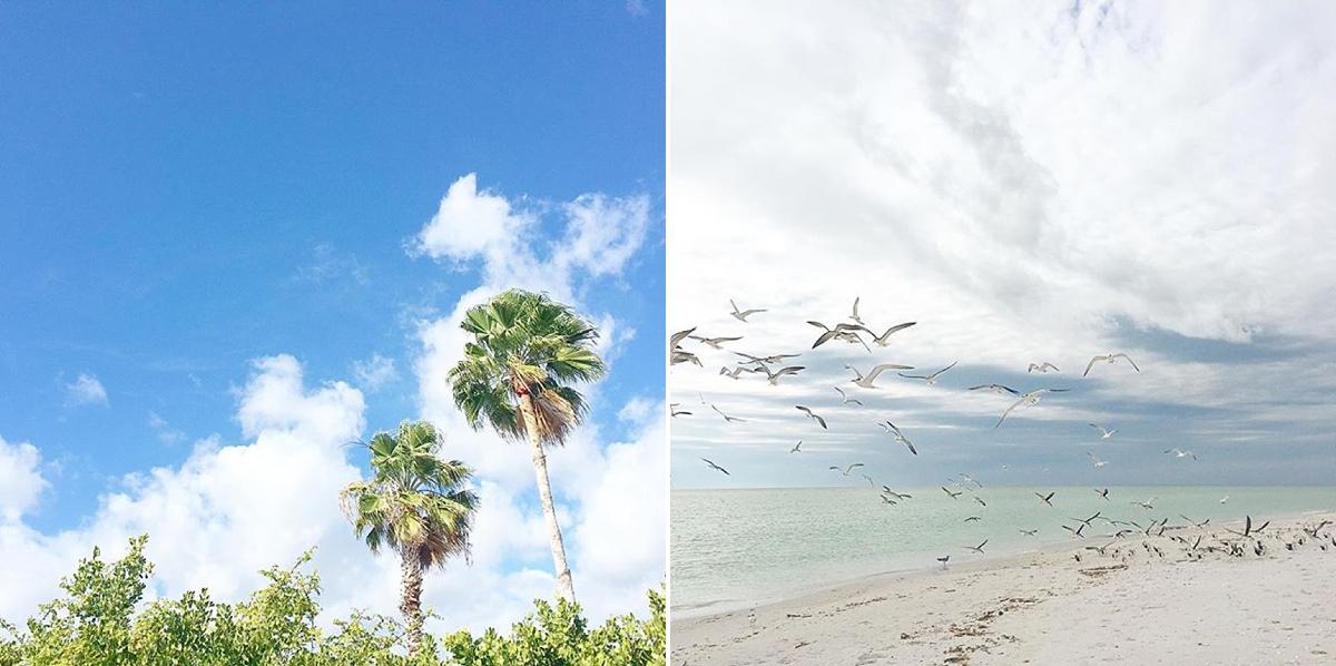 Gasparilla Island Vacation Rentals Florida Beach House_7790