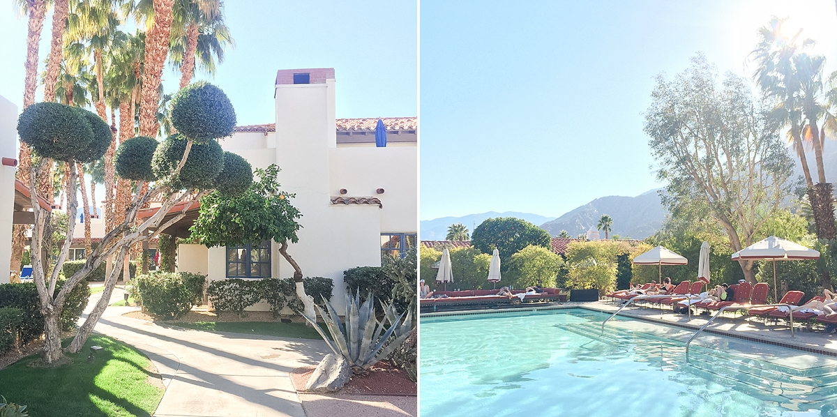 palm springs vacation_7888