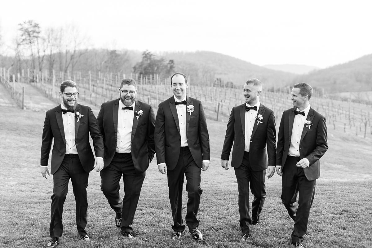 pippin hill farm wedding photos_8238