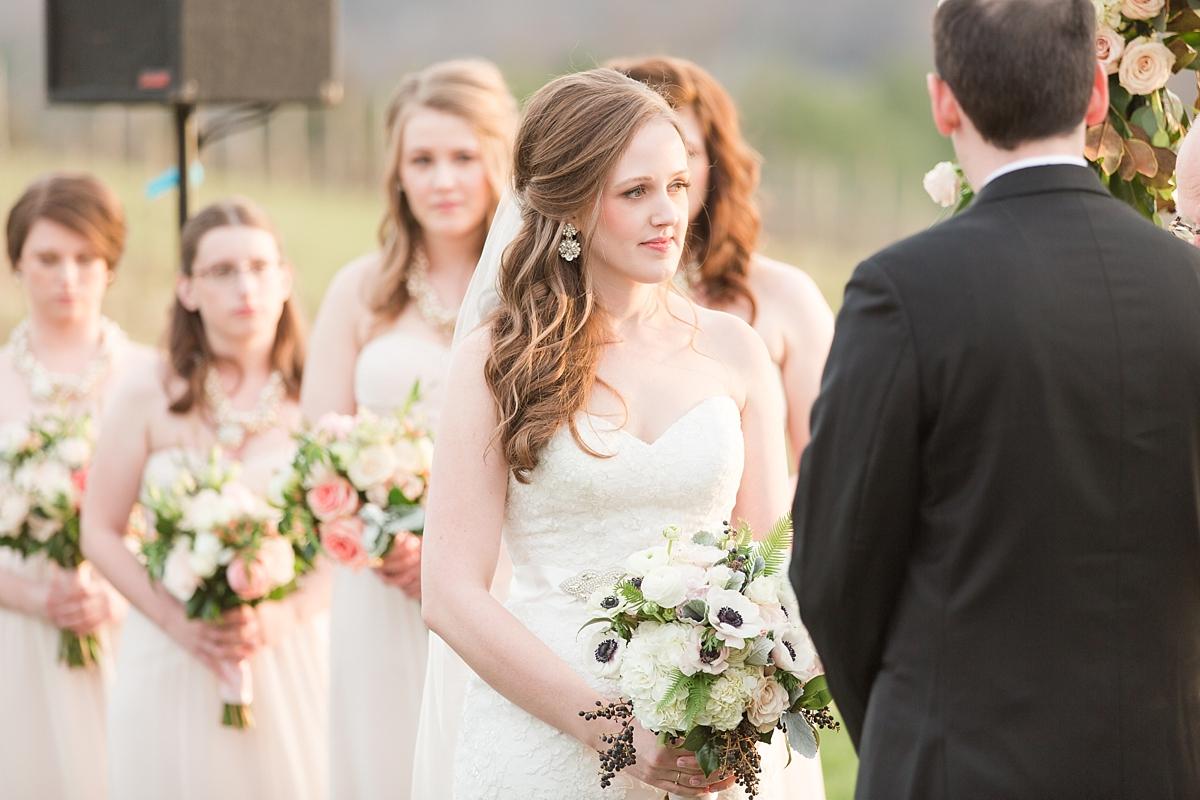 pippin hill farm wedding photos_8271