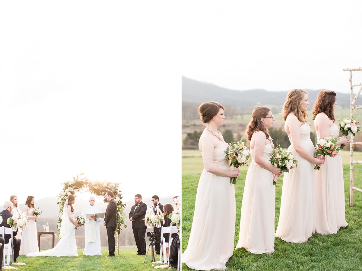 pippin hill farm wedding photos_8272