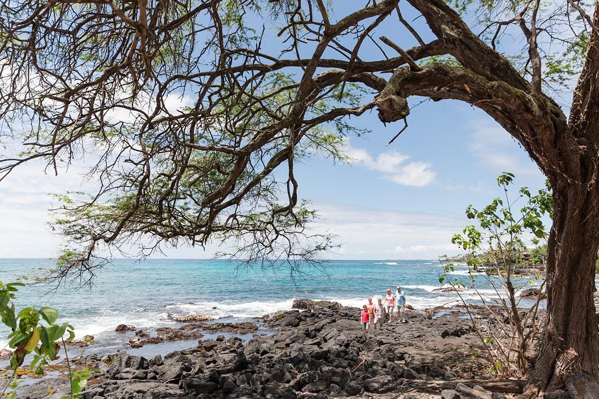Hawaii Big Island Vacation_8446