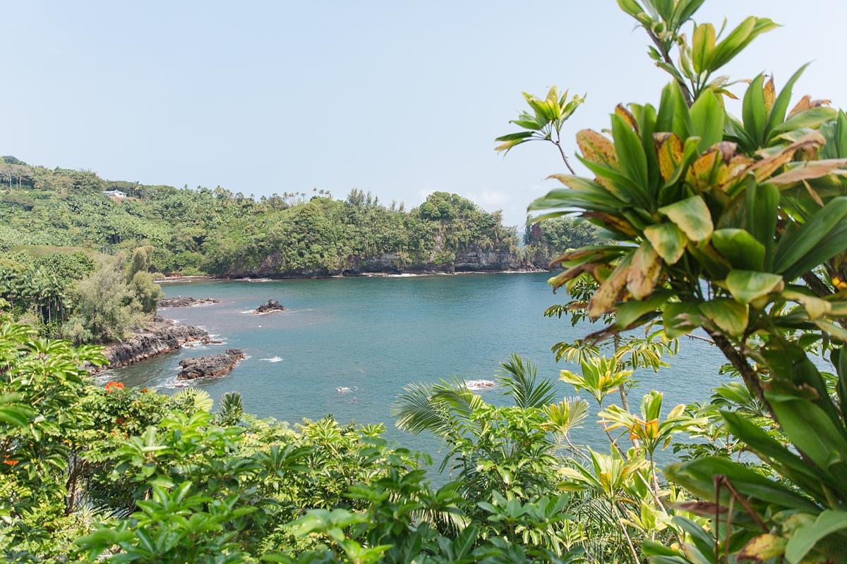 Hawaii Big Island Vacation_8471