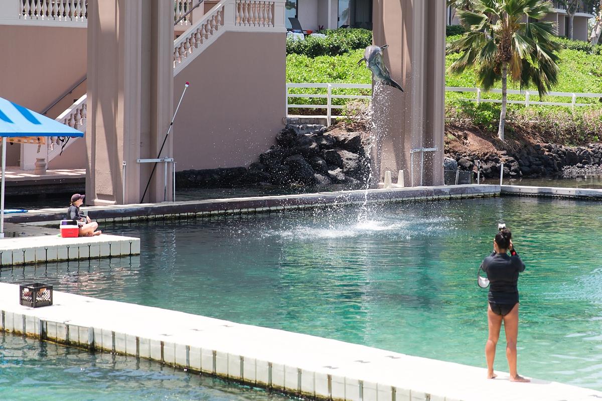 Hawaii Big Island Vacation_8512