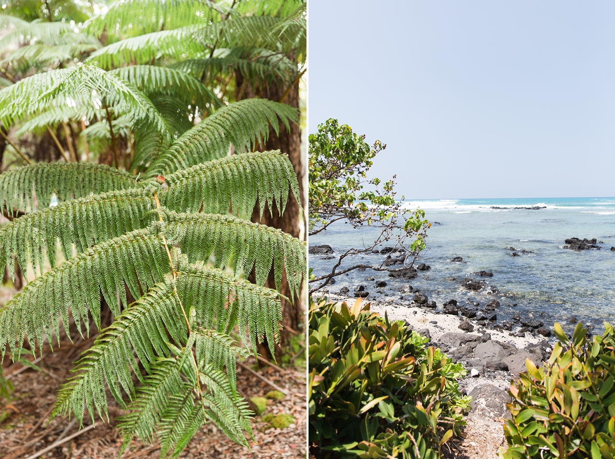Hawaii Big Island Vacation_8513