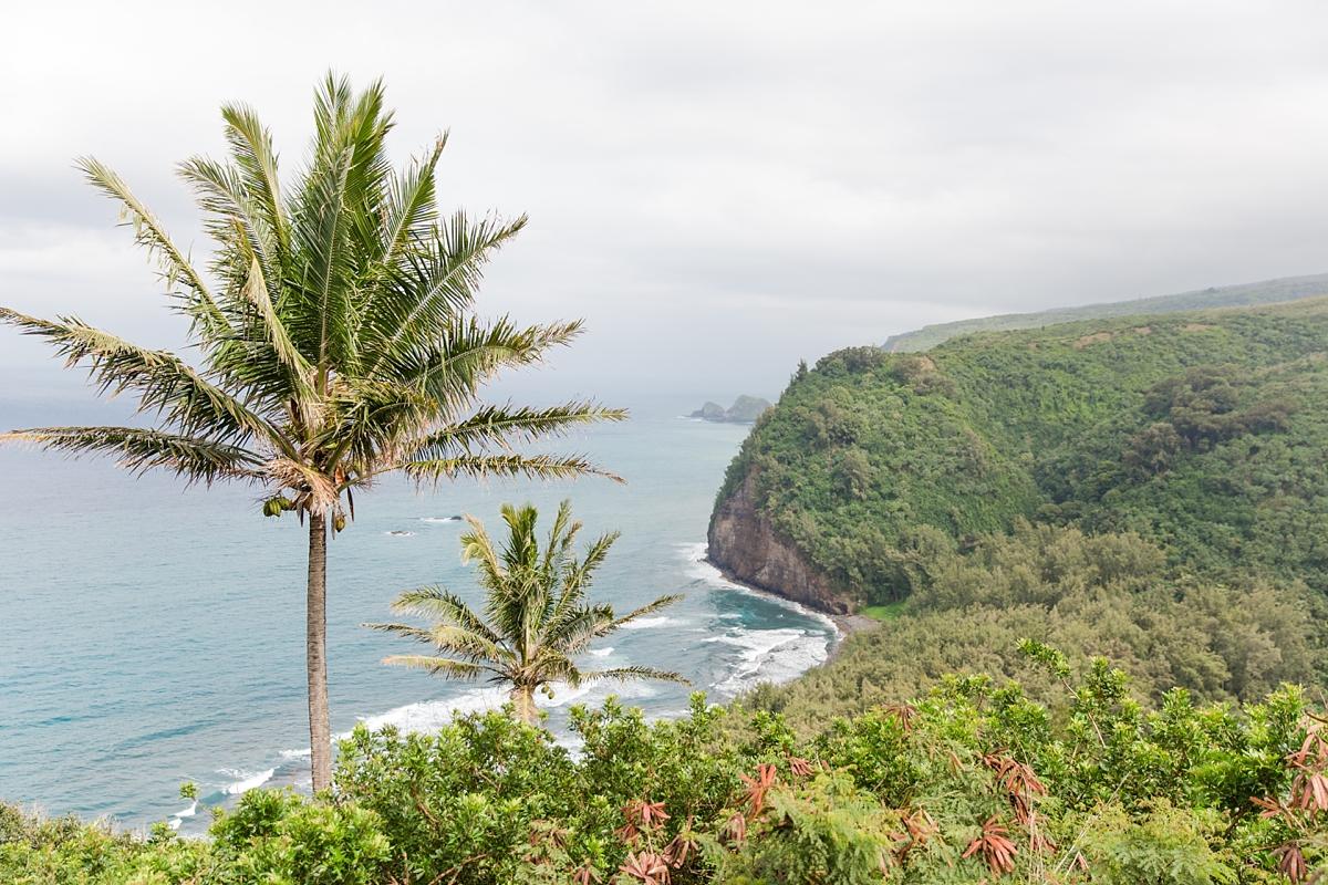 Hawaii Big Island Vacation_8526