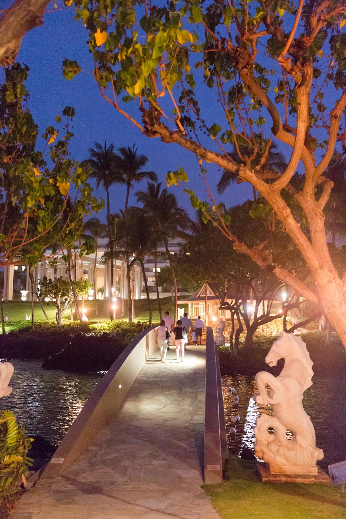 Hawaii Big Island Vacation_8544