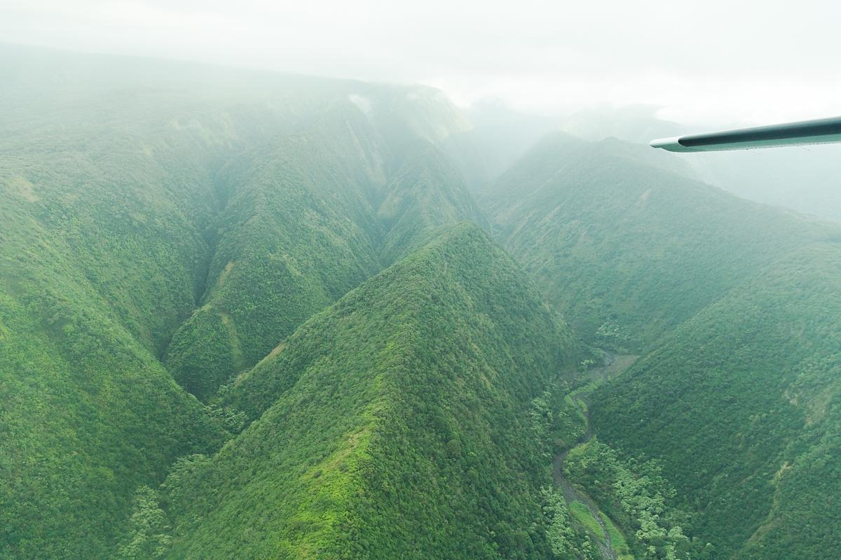 hawaiian vacation oahu_8570
