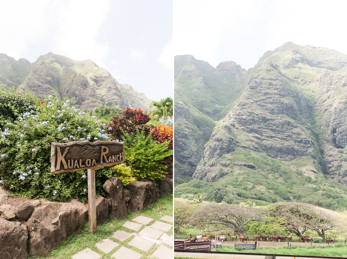 hawaiian vacation oahu_8609
