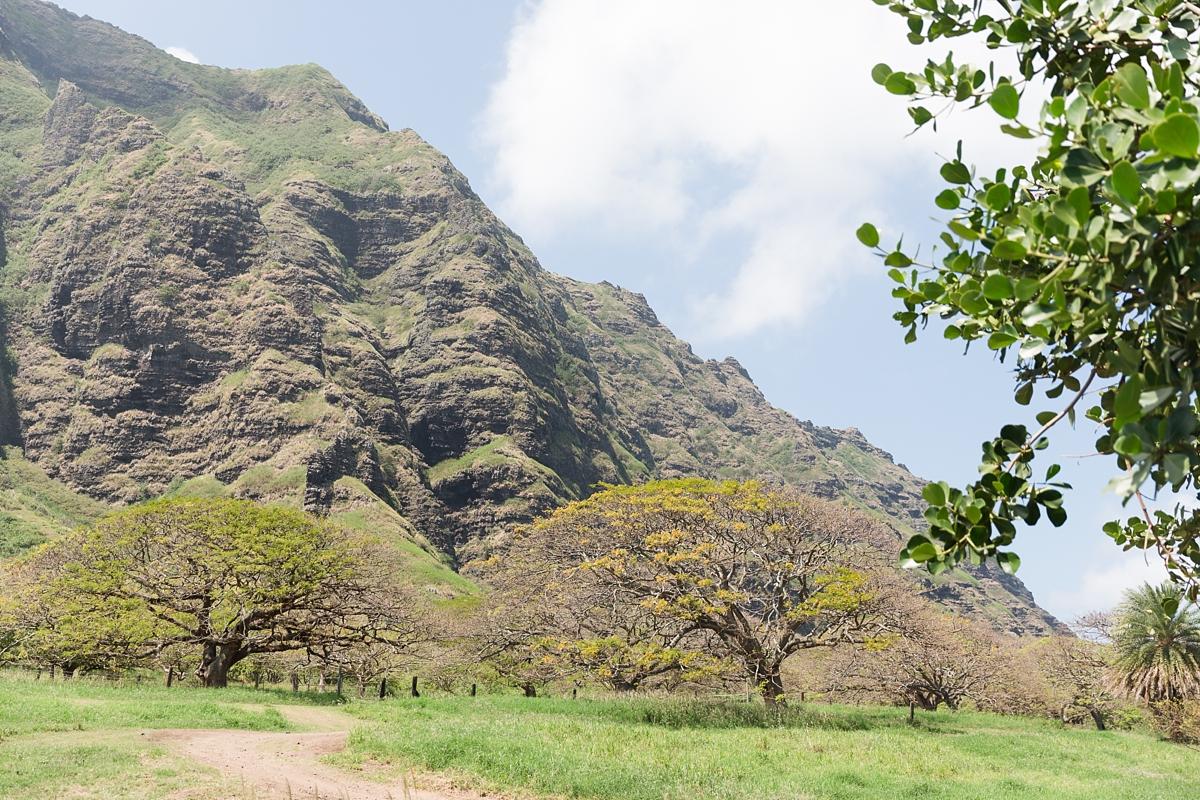hawaiian vacation oahu_8611