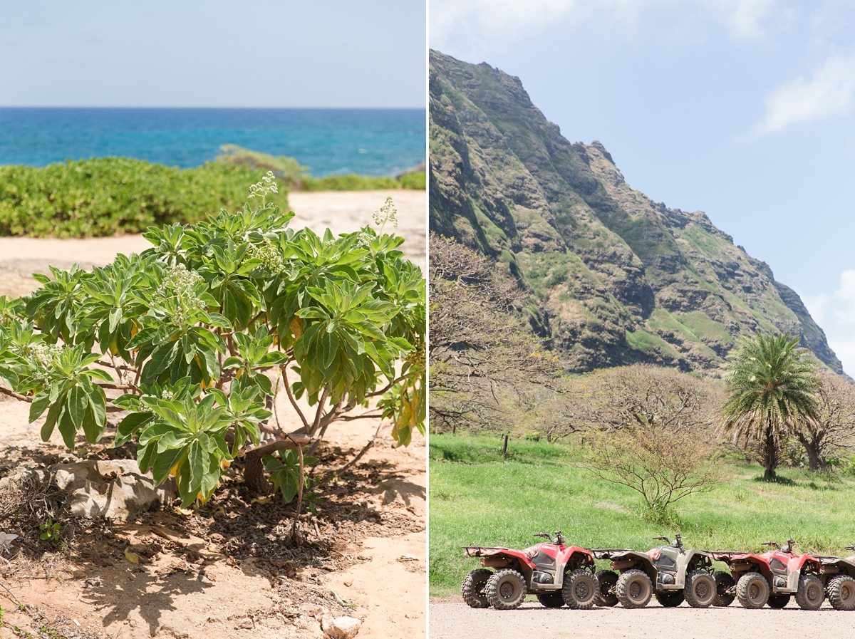 hawaiian vacation oahu_8612