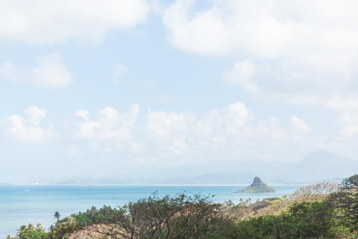 hawaiian vacation oahu_8620