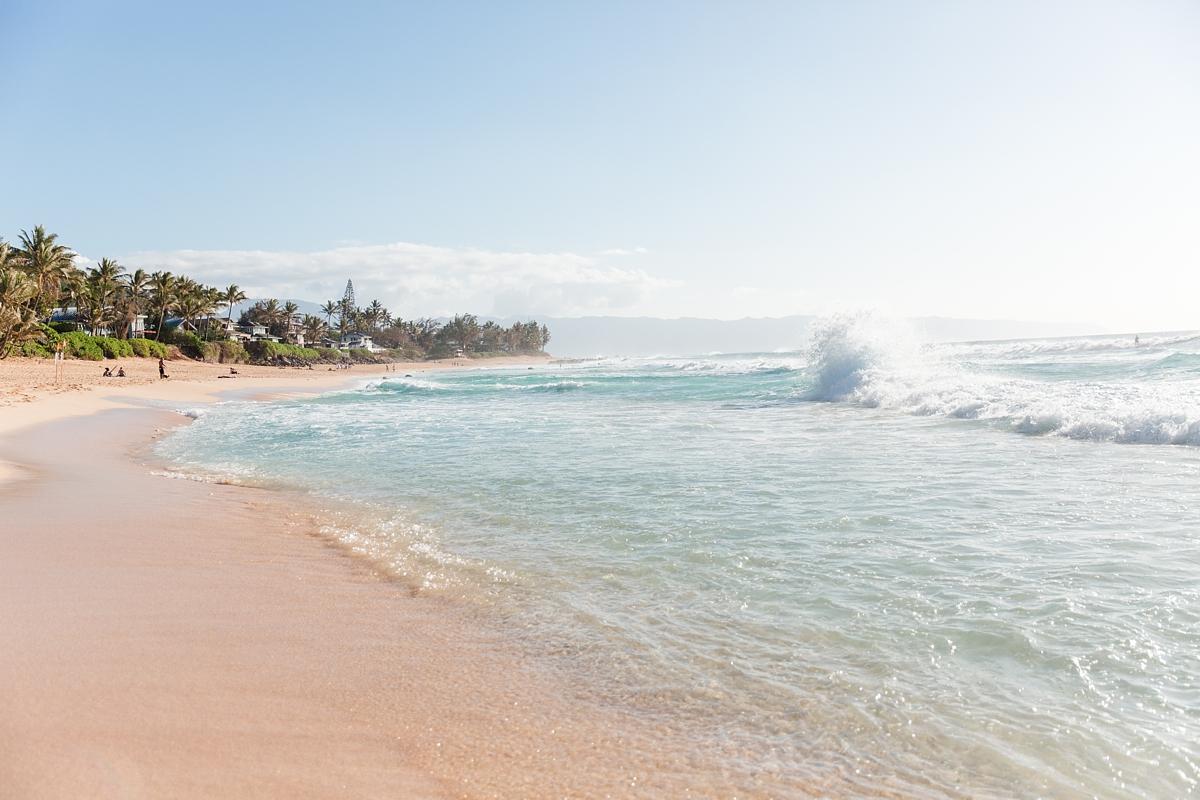 hawaiian vacation oahu_8626