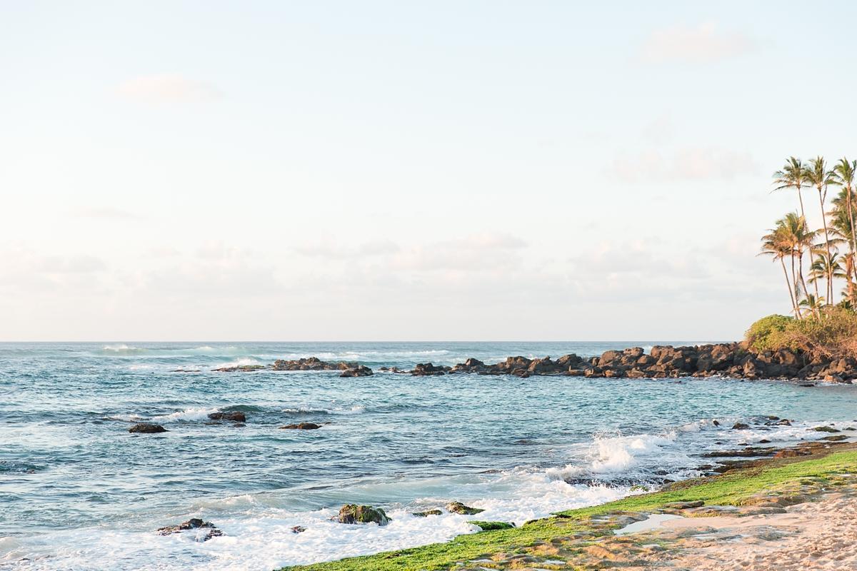 hawaiian vacation oahu_8636