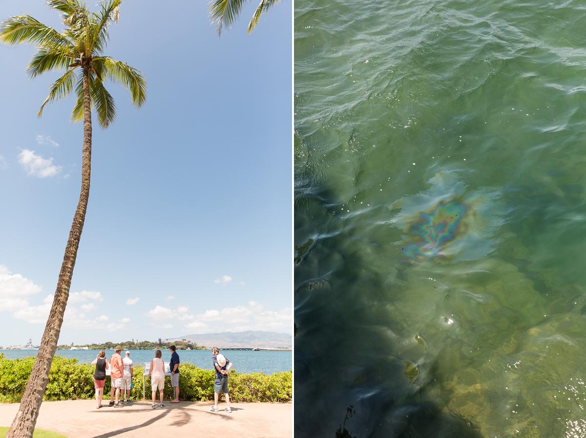 hawaiian vacation oahu_8645