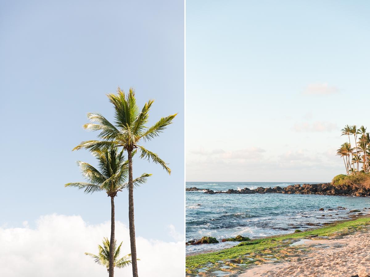 hawaiian vacation oahu_8649