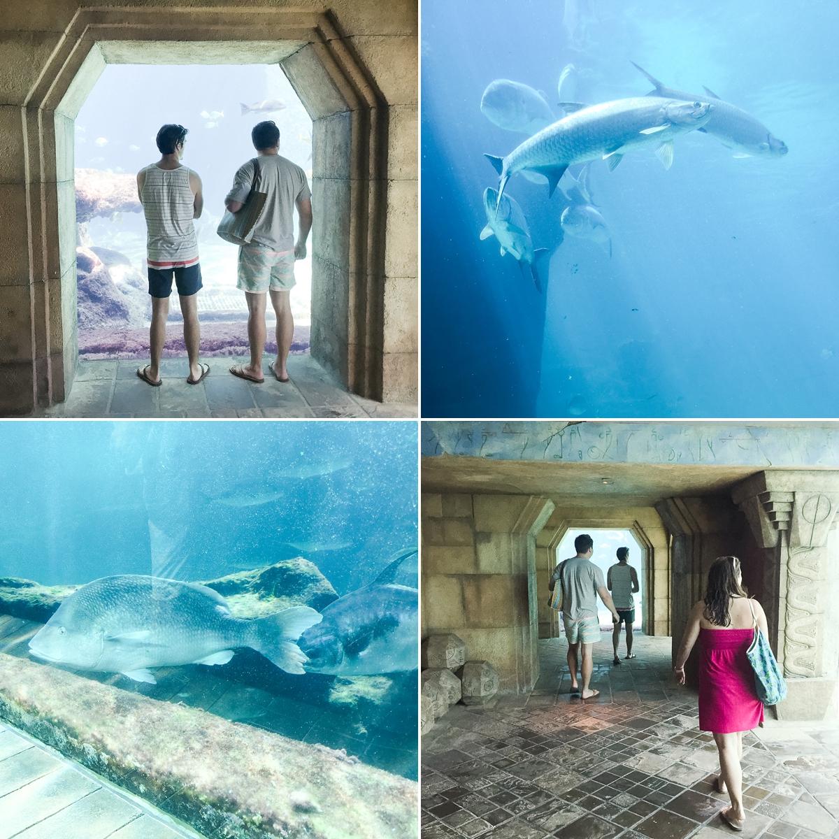 bahamas cruise vacation_0644