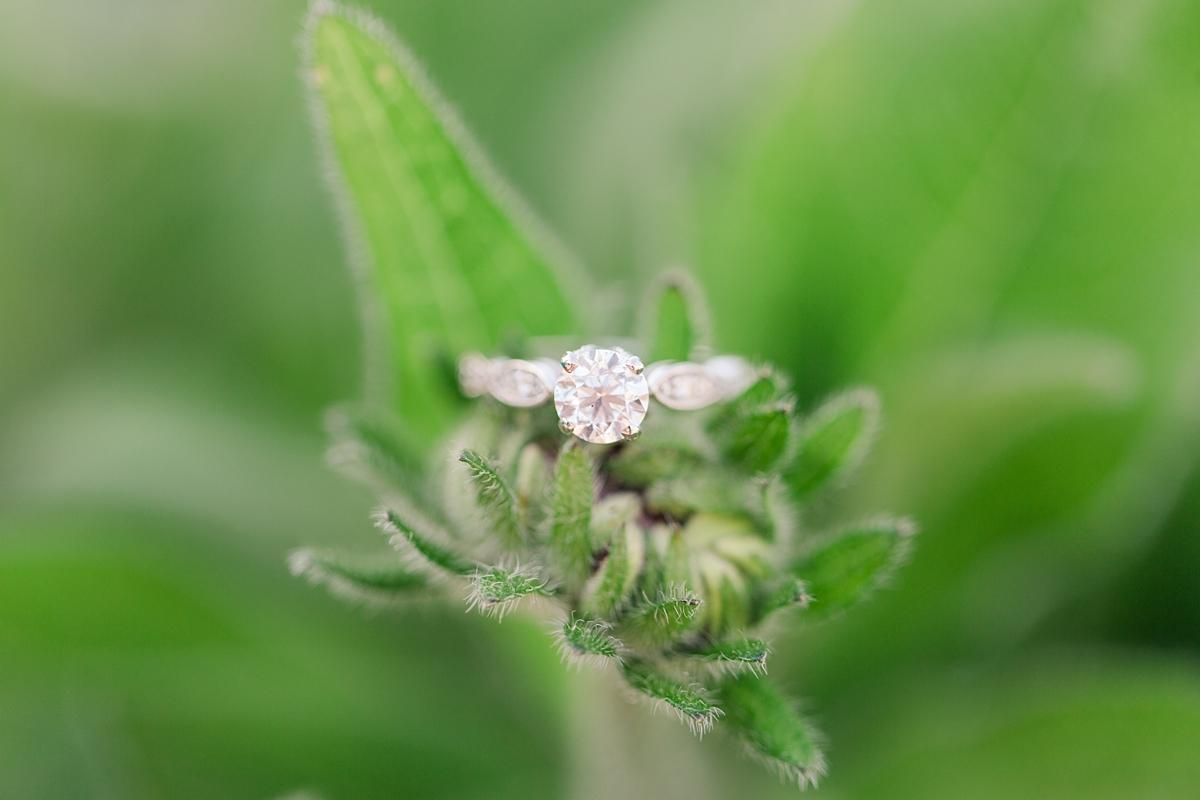 vienna wedding photographer katelyn james photography_1539