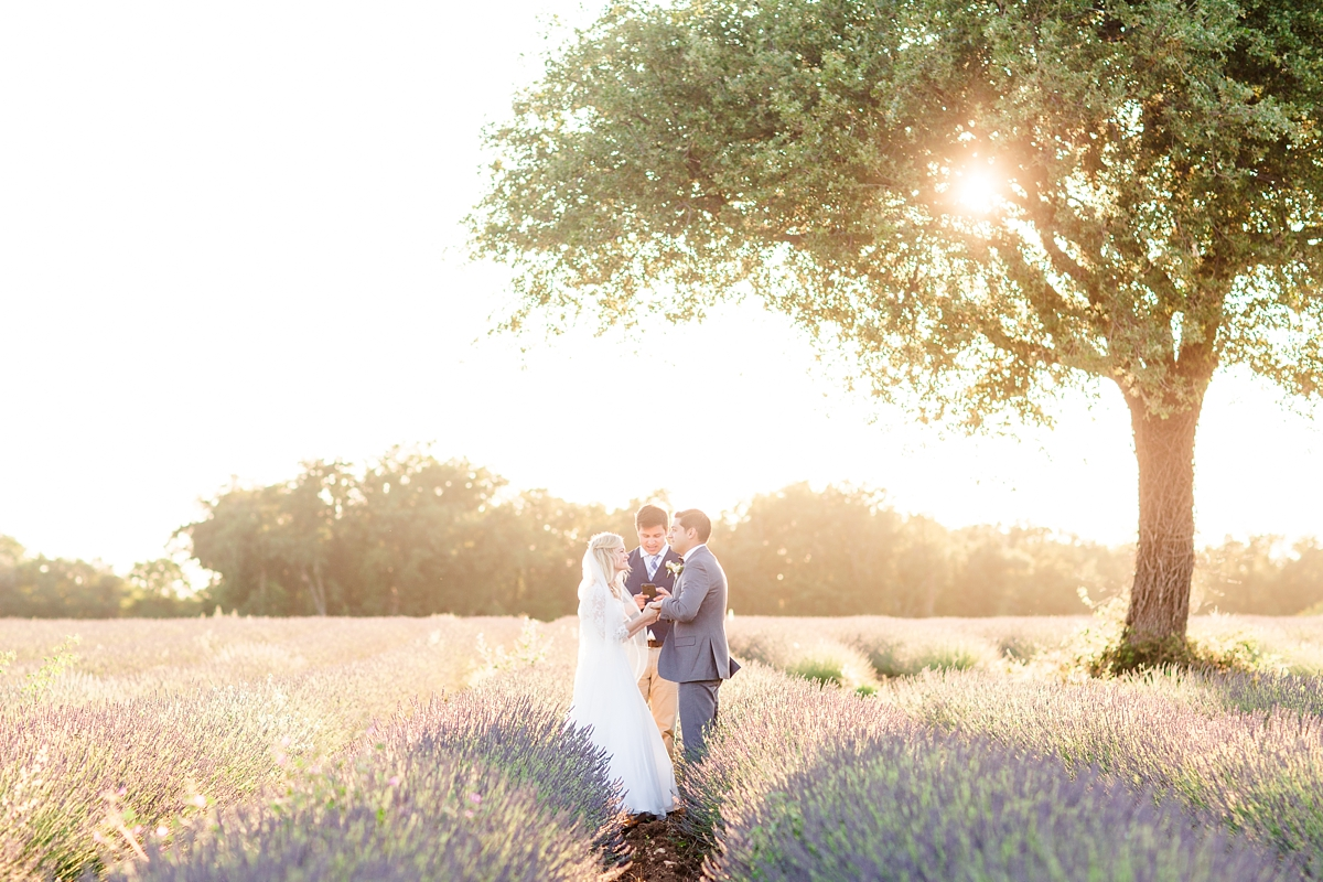 wedding portraits in frenchlavender fields in provence, Franve by photographer Katelyn James_1777