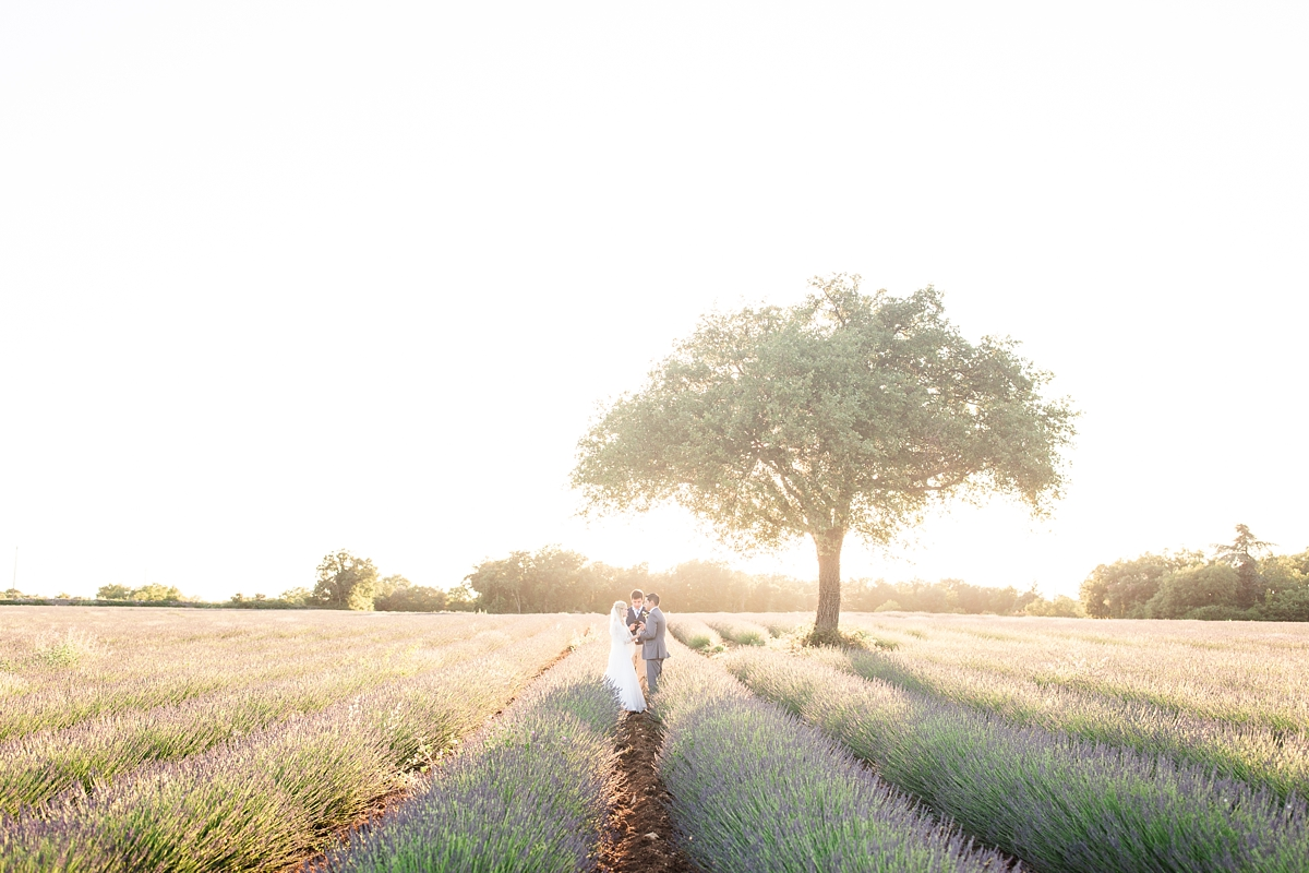 wedding portraits in frenchlavender fields in provence, Franve by photographer Katelyn James_1781