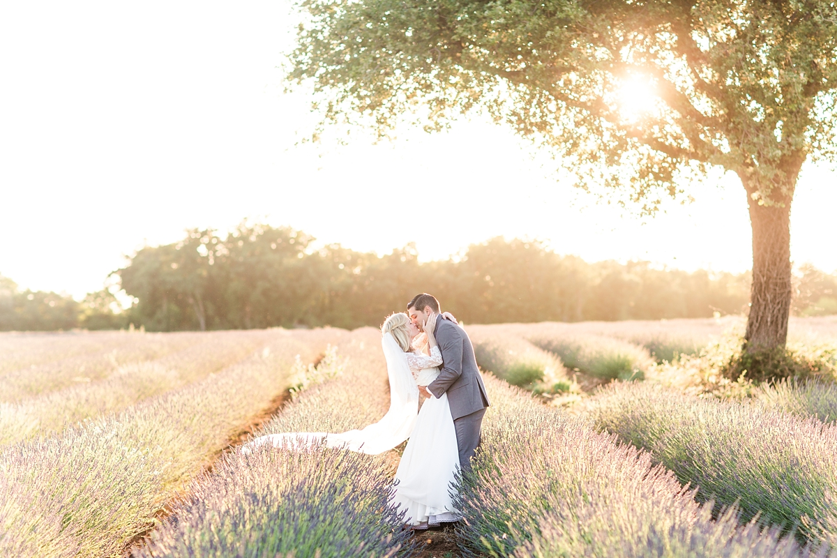wedding portraits in frenchlavender fields in provence, Franve by photographer Katelyn James_1795