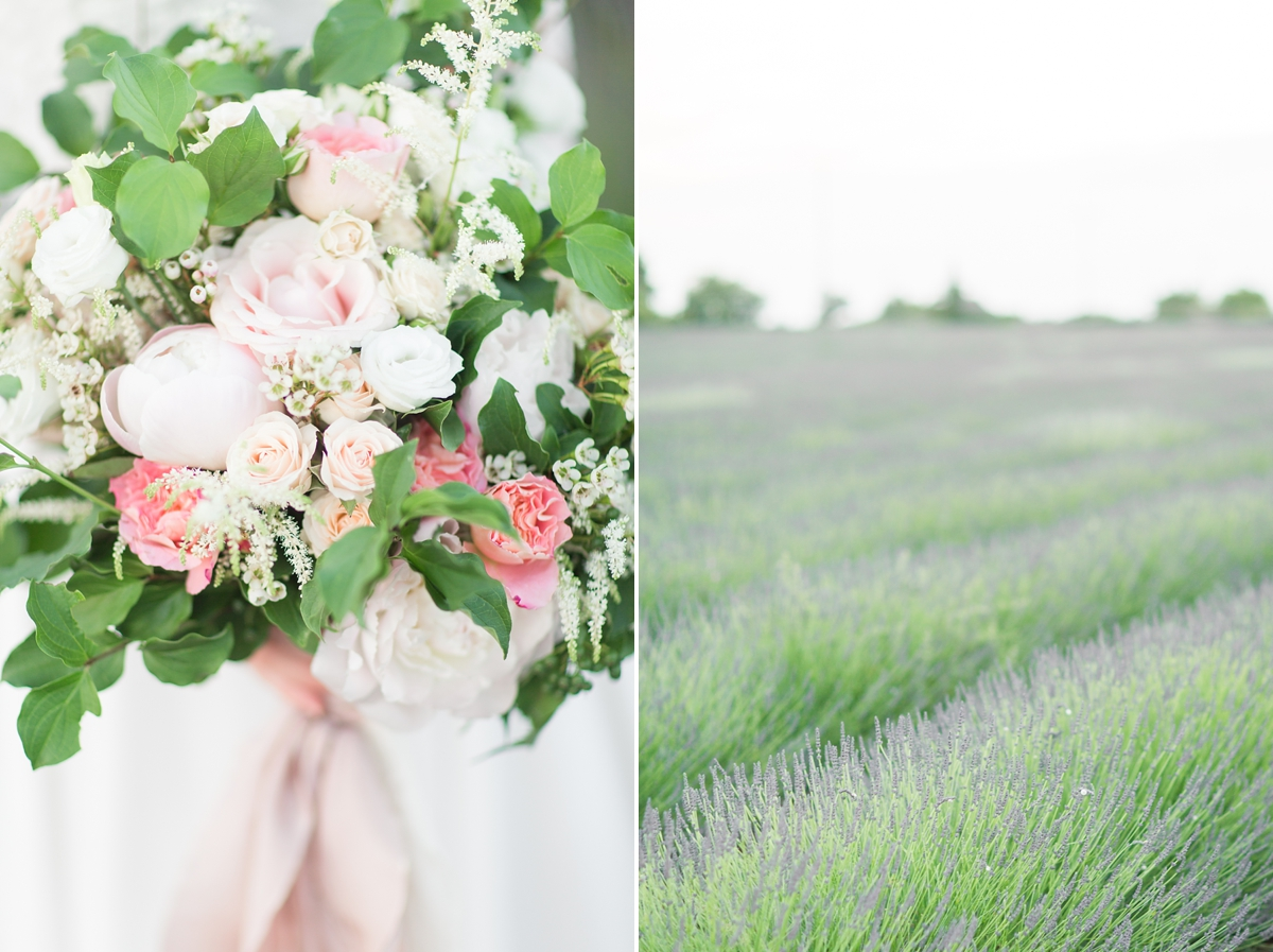 wedding portraits in frenchlavender fields in provence, Franve by photographer Katelyn James_1804