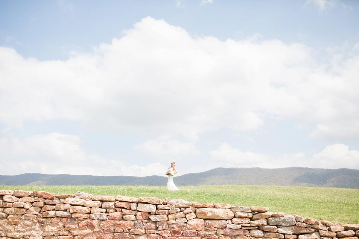 virginia-wedding-photographer-photos_0234