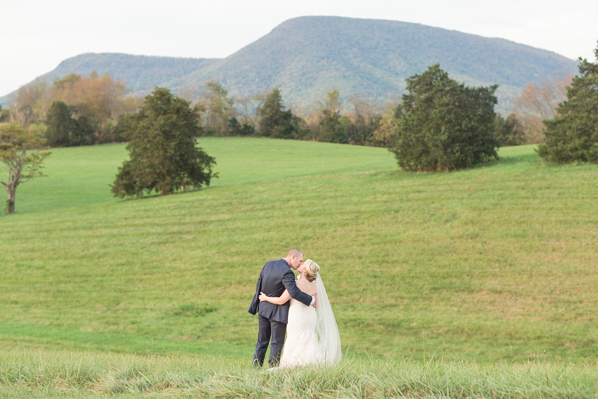 big spring farm wedding lexington virginia photographer_0847